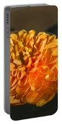 Chrysanthemum Gently Floating In The Fountain Of Campo De Fiori - Rome - Italy Portable Battery Charger
