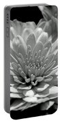 Chrysanthemum In Light And Shadow Portable Battery Charger