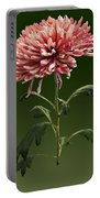Chrysanthemum Shelbers Portable Battery Charger