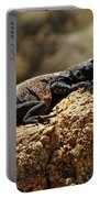 Chucka Walla Basking Portable Battery Charger