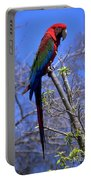 Cincy Parrot Portable Battery Charger