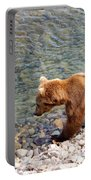 Cinnamon-colored Grizzly Bear By Moraine River In Katmai Np-ak  Portable Battery Charger