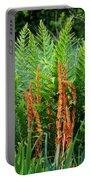 Cinnamon Fern Portable Battery Charger