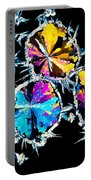 Citric Acid Crystals In Polarized Light Portable Battery Charger