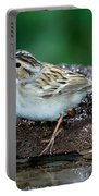Clay-colored Sparrow Spizella Pallida Portable Battery Charger