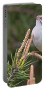 Clay-coloured Sparrow Pictures 35 Portable Battery Charger