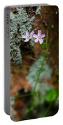 Claytonia And Rust Portable Battery Charger