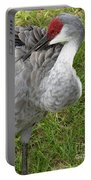 Cleaning  Feathers Portable Battery Charger