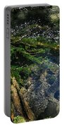 Clearwater Falls Series 17 Portable Battery Charger