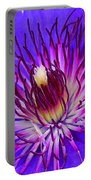 Clematis 1 Portable Battery Charger
