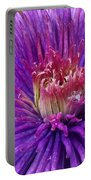 Clematis Blossom Upclose Portable Battery Charger