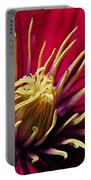 Clematis Center In Oils Portable Battery Charger