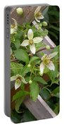 Clematis Grace Portable Battery Charger