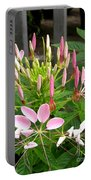 Cleome Named Cherry Queen Portable Battery Charger