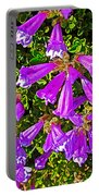 Cliff Penstemon On Watchman Overlook In Crater Lake National Park-oregon Portable Battery Charger