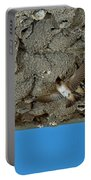 Cliff Swallows At Nests Portable Battery Charger