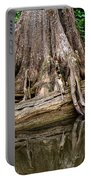 Clinging Cypress Portable Battery Charger