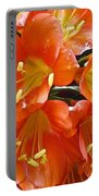 Music Please Clivia Portable Battery Charger