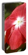 Close Up Of A Red Busy Lizzie Flower Portable Battery Charger