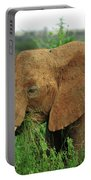 Close Up Of African Elephant Portable Battery Charger