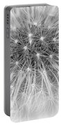 Close-up Of Dandelion Seeds Portable Battery Charger