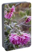 Close-up Of Flowers Covered By Frost Portable Battery Charger