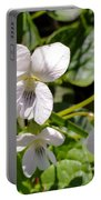 Close-up Of White Violets  Portable Battery Charger