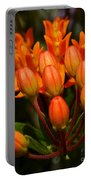 Close-up Of Wildflower Buds Portable Battery Charger