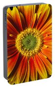 Close Up Yellow Orange Mum Portable Battery Charger