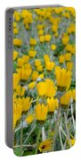 Closed Yellow Daisies Portable Battery Charger