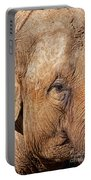 Closeup Of An Elephant Portable Battery Charger