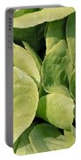 Closeup Of Boston Lettuce Portable Battery Charger
