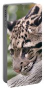 Clouded Leopard Cub Portable Battery Charger