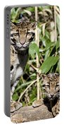 Clouded Leopards Portable Battery Charger