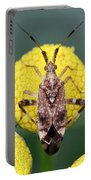 Clouded Plant Bug On Tansy Portable Battery Charger