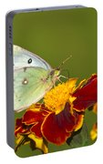 Clouded Sulphur Butterfly Portable Battery Charger