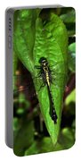 Club Tailed Dragonfly Portable Battery Charger