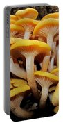 Cluster Fungi Portable Battery Charger