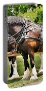 Clydesdale Horses Portable Battery Charger