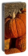 Knarly Pumpkin Portable Battery Charger