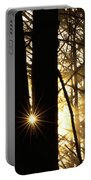 Coastal Forest Portable Battery Charger by Art Wolfe