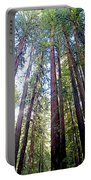 Coastal Redwoods Reach For The Sky In Armstrong Redwoods State Preserve Near Guerneville-ca Portable Battery Charger