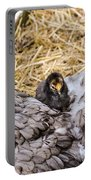 Cochin Hen And Chick Portable Battery Charger