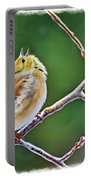 Cock-a-doodle Doo Gold Finch - Digital Paint Portable Battery Charger