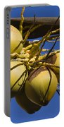Coconut 1 Portable Battery Charger