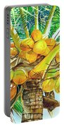 Coconut Series II Portable Battery Charger