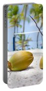 Coconuts Portable Battery Charger