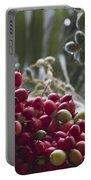 Cocos Nucifera - Niu Mikihilina - Palma - Niu - Arecaceae -  Palmae Portable Battery Charger