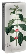 Coffea Arabica From Phytographie Portable Battery Charger