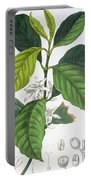 Coffea Arabica Portable Battery Charger